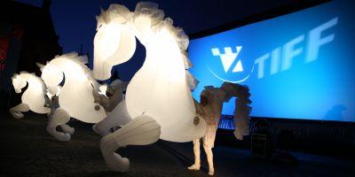 TIFF 2015 a pornit in pasi de tango si nechezat de cai (VIDEO)