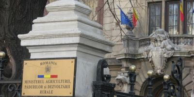 Numire controversata in Guvern. O directoare acuzata in 2012 ca a intervenit in dosarul Voiculescu, pusa secretar general al Ministerului Agriculturii
