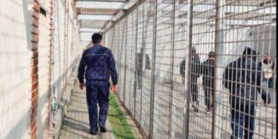 Cat vor rezista in libertate detinutii eliberati cu