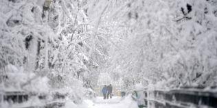 Cod galben de ninsori puternice in opt judete din nordul si centrul tarii, vant puternic in aproape toate zonele tarii